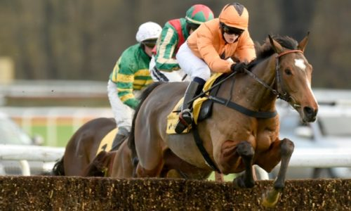 haydock_fixed_brush_hurdle_630x3781